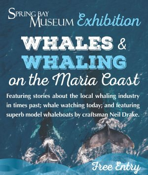 Whaling-Exhibition-flyer-A3